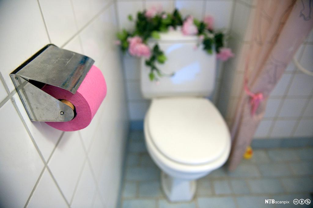 Hvitt toalett mot hvit vegg, og dorullholder montert ved siden av toalettet. Oppå toalettsisternen ligger det kunstige rosegrener med rosa roser, og toalettpapiret er også kraftig rosa. Fotografi.