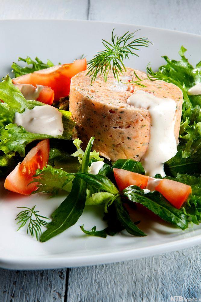 Bilete av laksemousse med salat og chilimajones-dressing
