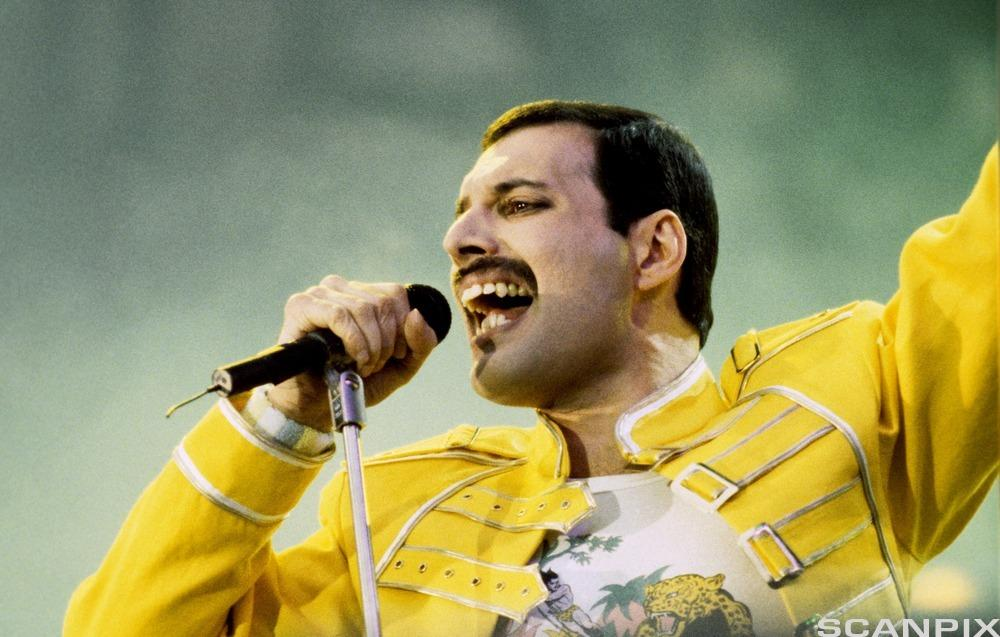 Freddie Mercury had Indian parents and spent most of his youth at a school near Mumbai