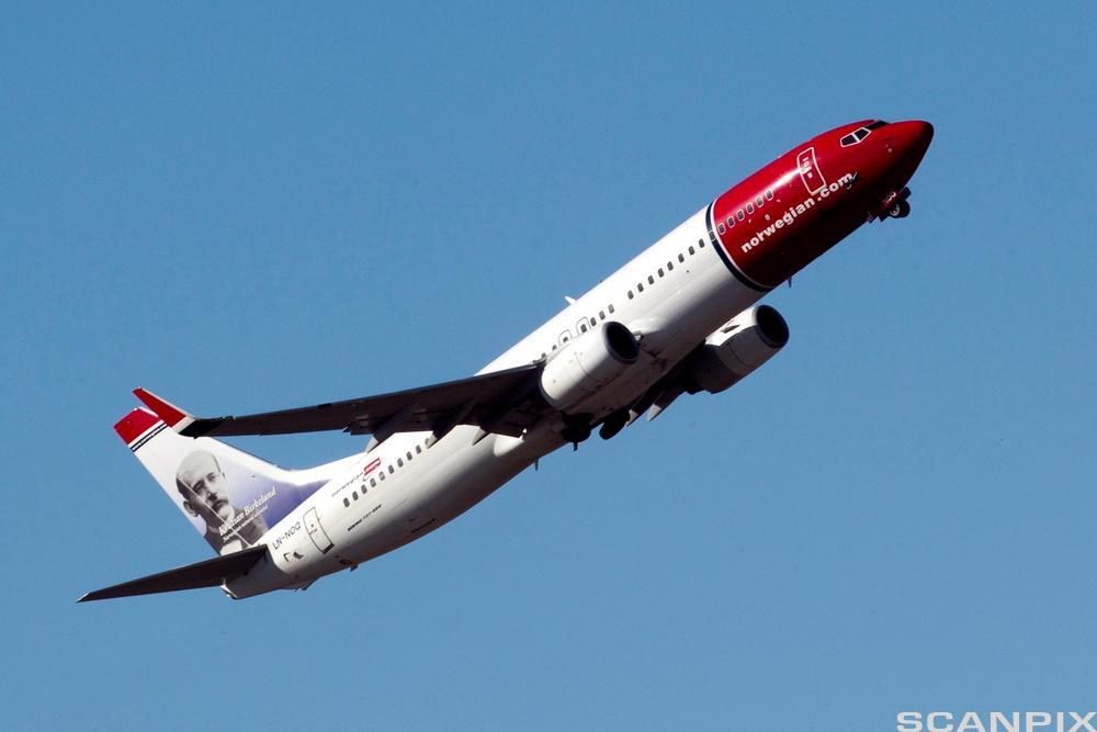 Et fly tar av. Foto.