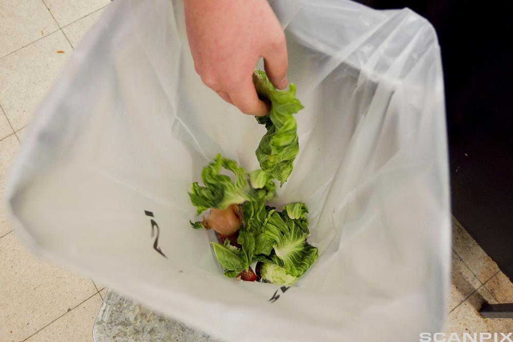En hånd som kaster matavfall i en søppelkasse. Foto.