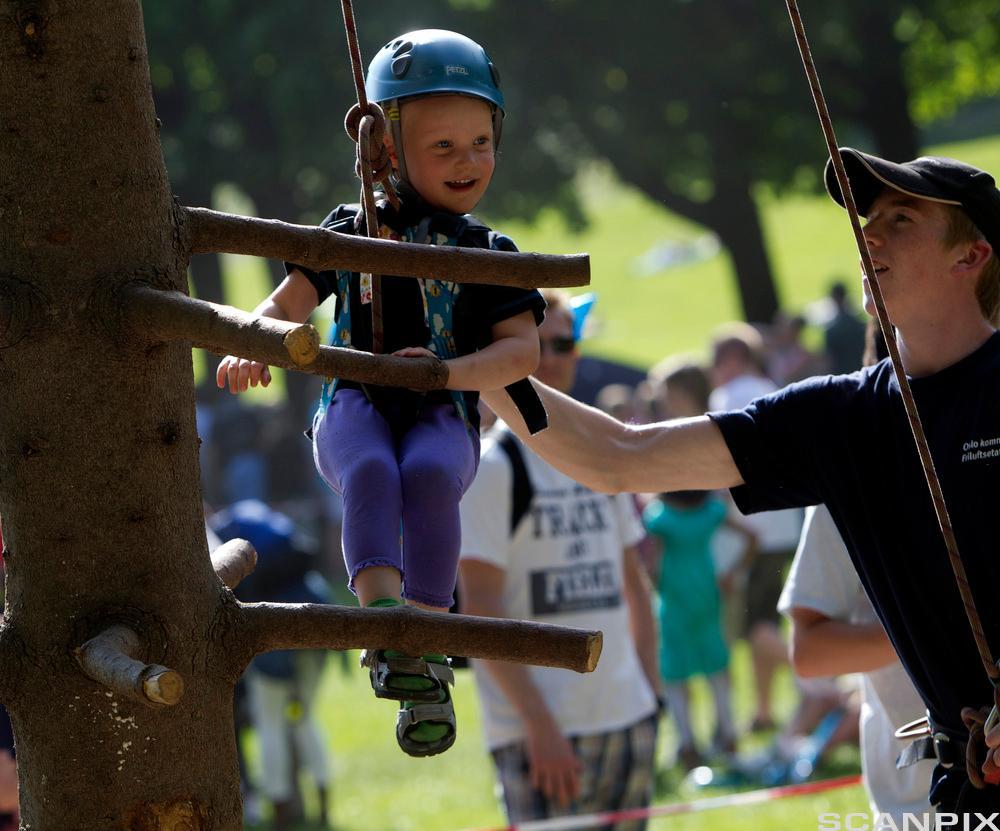 Et barn med hjelm og sikkerhetsutstyr klatrer i et tre. Foto