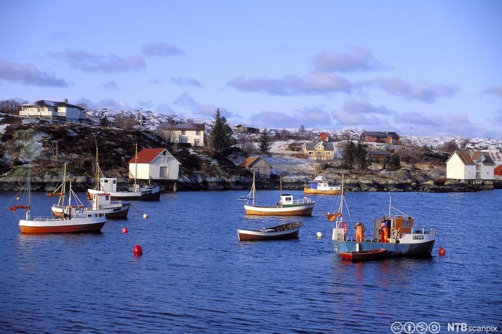 Båter og fiskere, Hitra i Sør-Trøndelag. Foto.