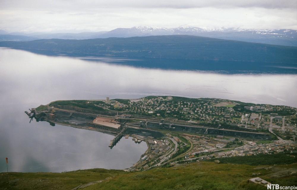 Flyfoto av Narvik. Foto