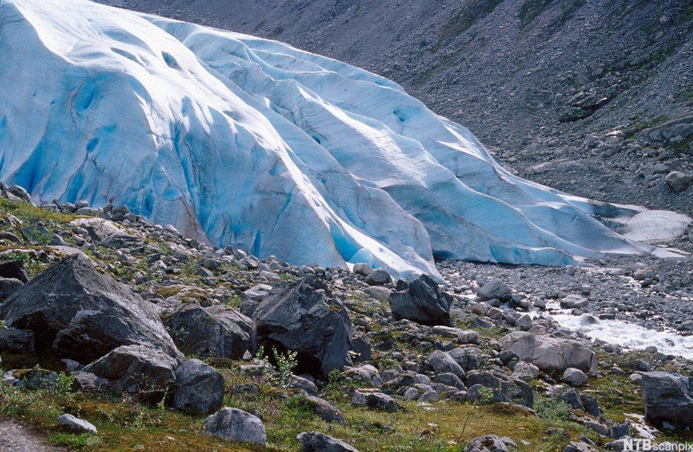 Brefront på isbre. Foto