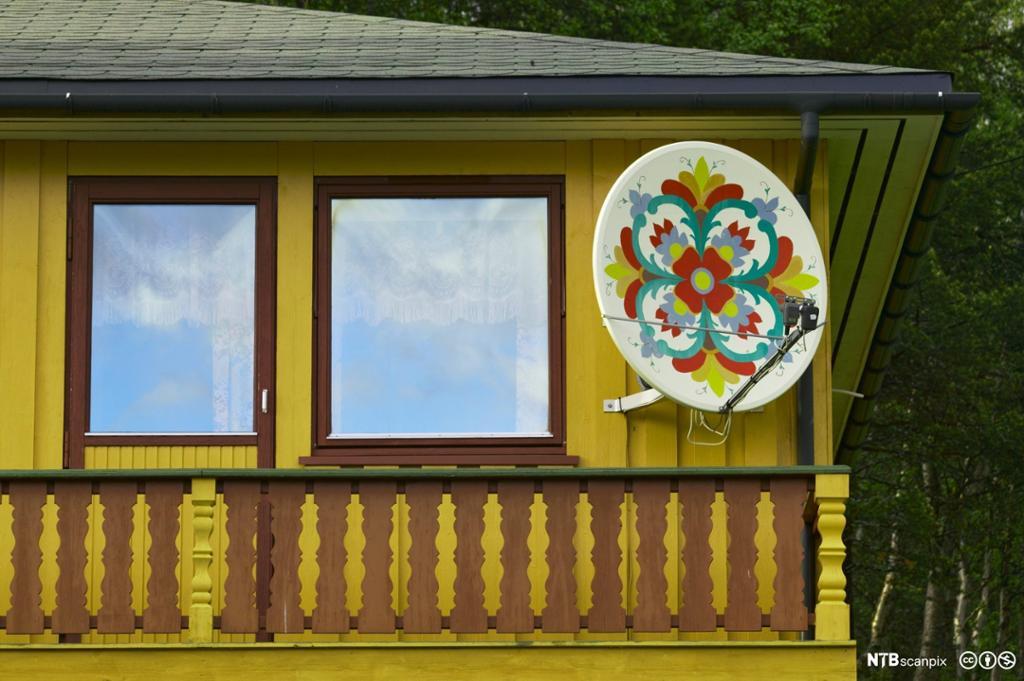 Rosemalt parabolantenne på hus. Foto.