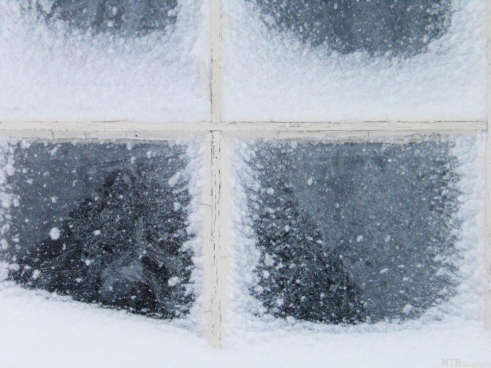 Vindu med snø og frost. Foto.