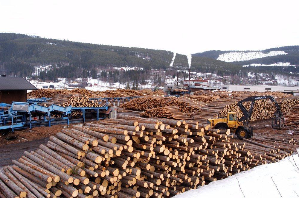Tømmerlager. Foto
