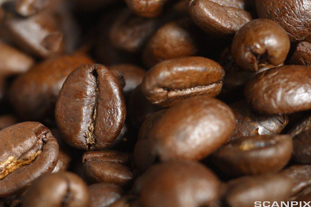 Bilde av kaffebønner.