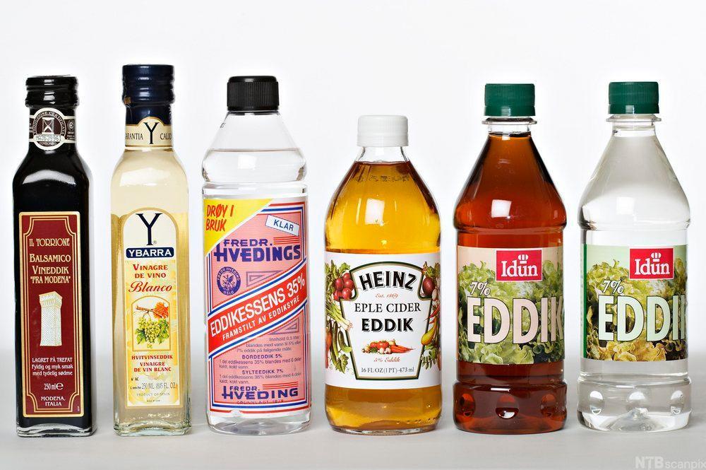Forskjellige typer eddik i flaske. Foto.