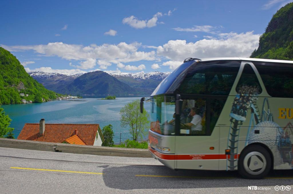 Buss med bussåfør. Foto.