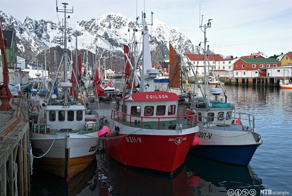 Bildet viser fiskebåter ved kai.
