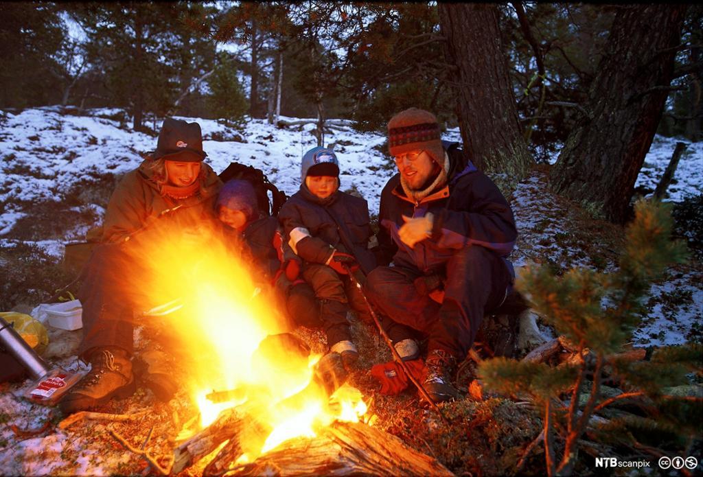 To voksne og to barn brenner bål i skogen. Foto.