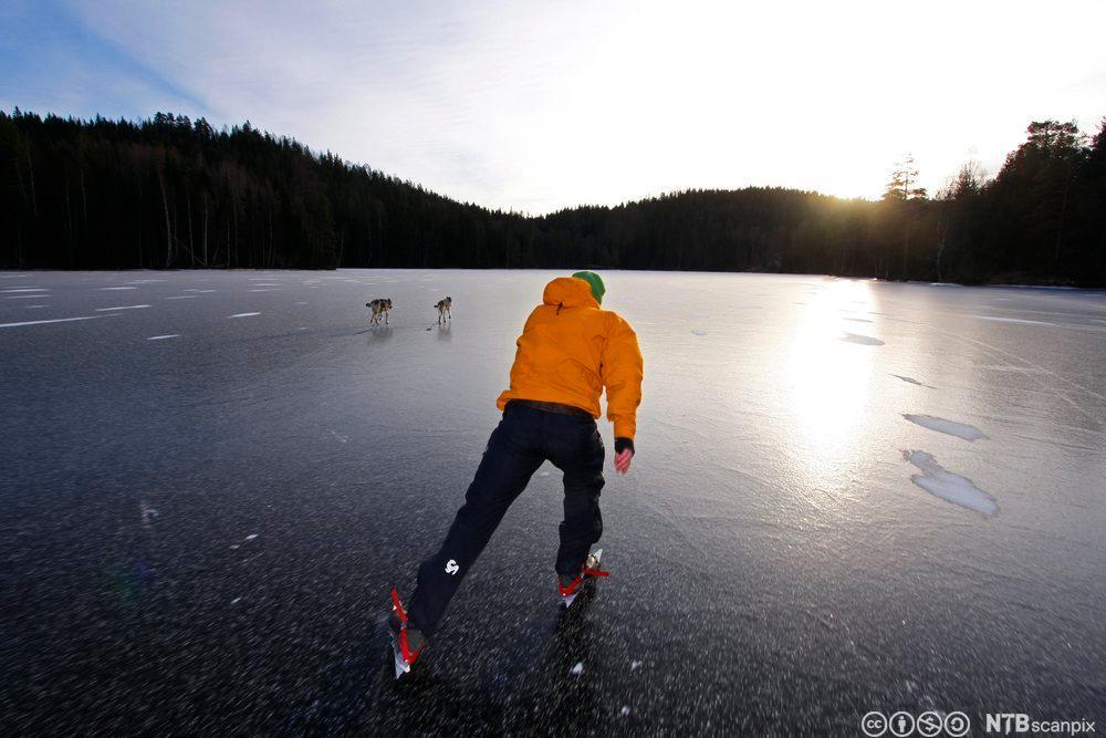 Skøyteløper på isen. Foto