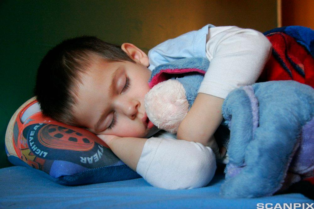Barn søv. Foto.
