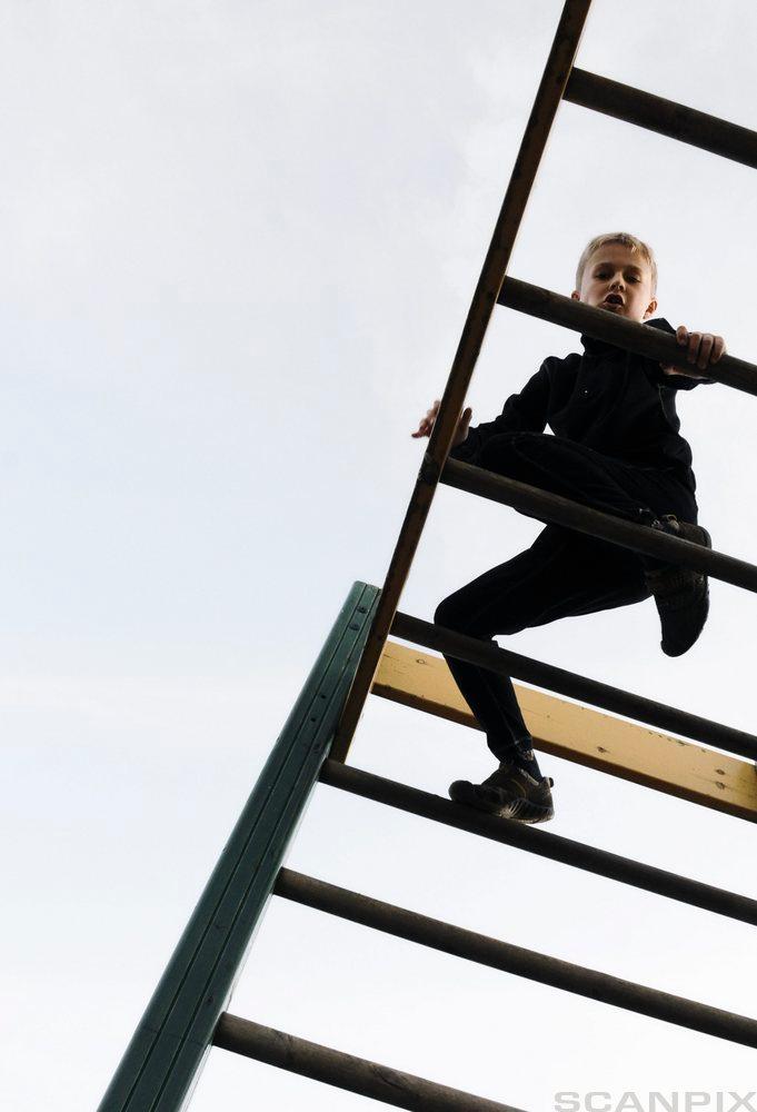 Gutt som står i en stige. Foto.