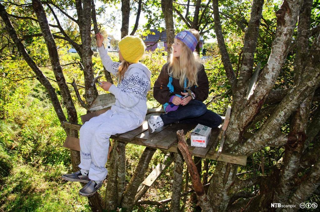 Jenter med hammere og spiker bygger på trehytte. Foto.