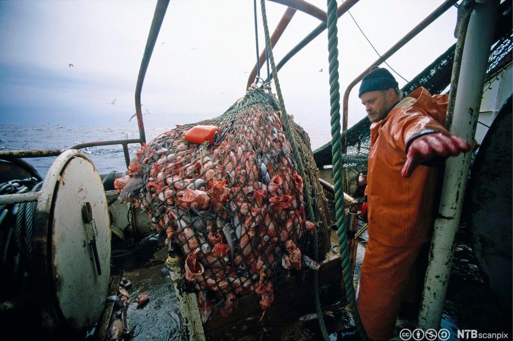 Tysk fisketråler. Foto.