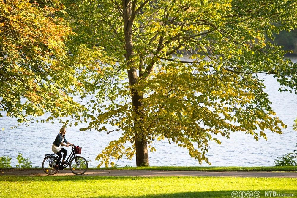 Ung kvinne på sykkel