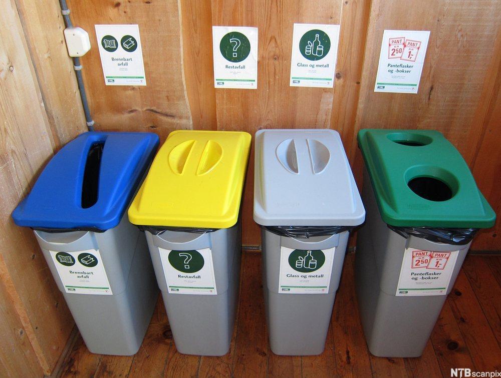 4 avfallsbøtter med lokk i forskjellige farger.foto.