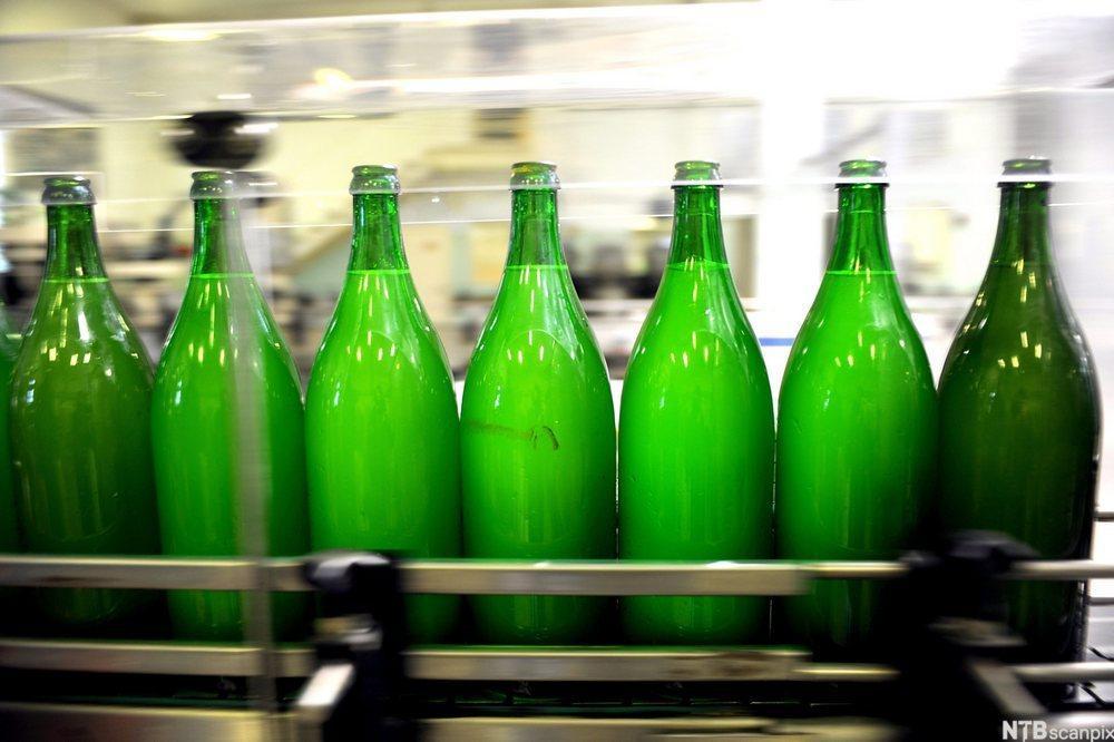 Fylling av magnumflasker med musserende vin i Ungarn. Foto.