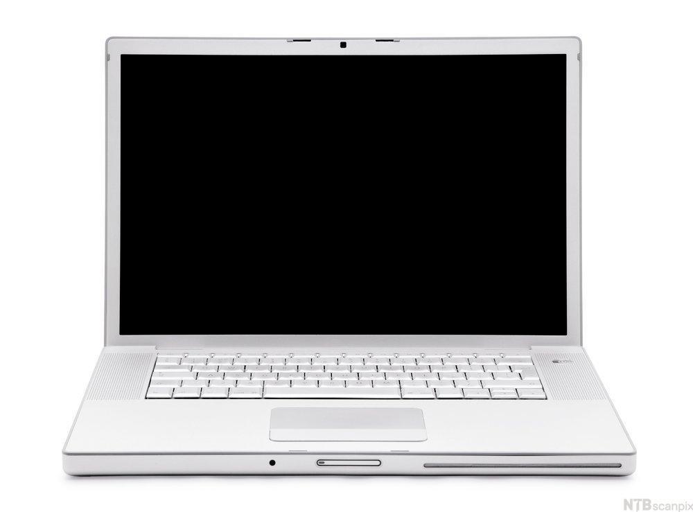 Bærbar PC med svart skjerm. Foto.
