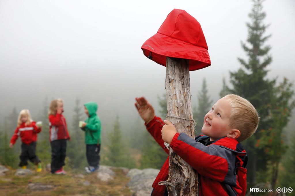 Barn leker på tur i skogen i regnvær og en gutt henger sydvesten sin på et tre. Foto.