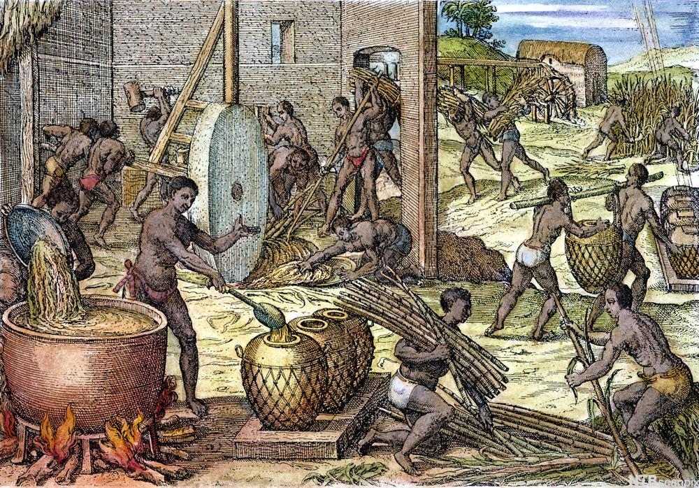 Slaver på sukkerplantasje, illustrasjon av Theodore de Bry