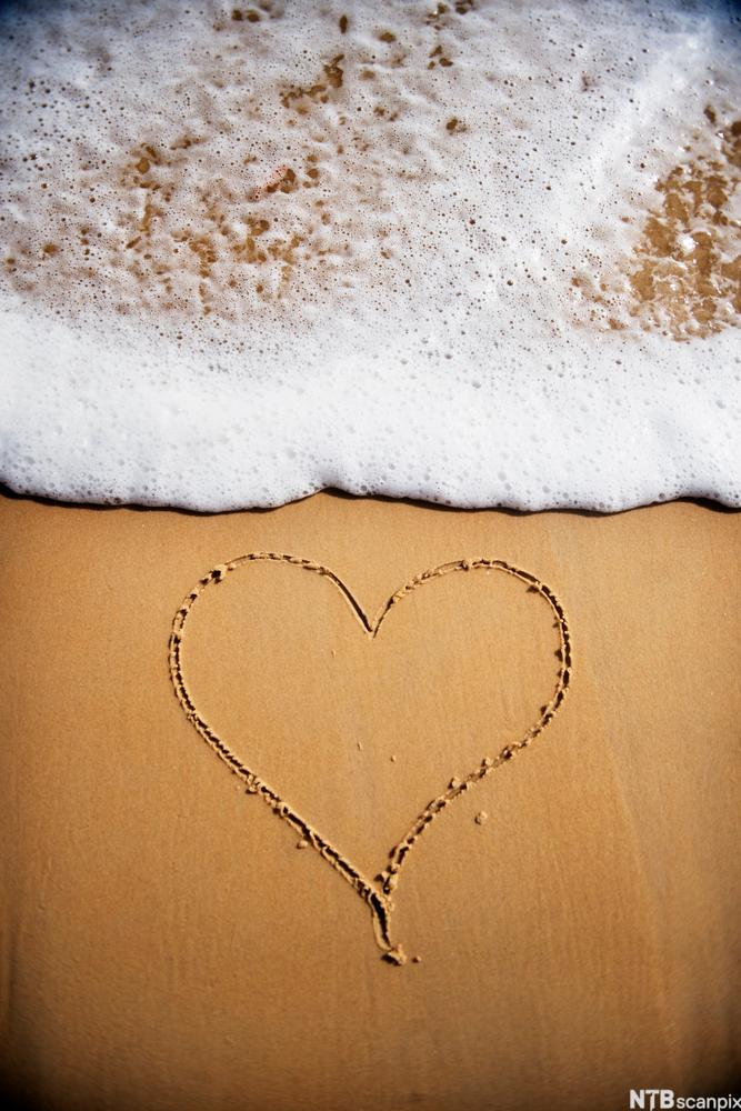 A Love Letter in the Sand