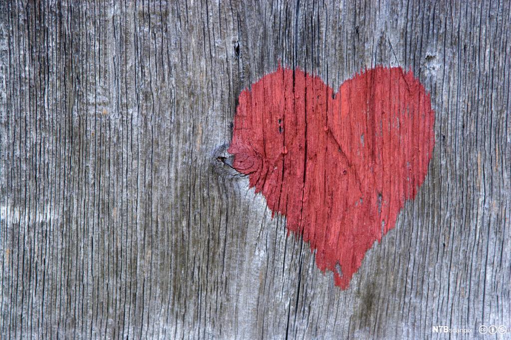 Gammel, uttørka og mørkna treplanke med påmalt rødt hjerte. Foto.