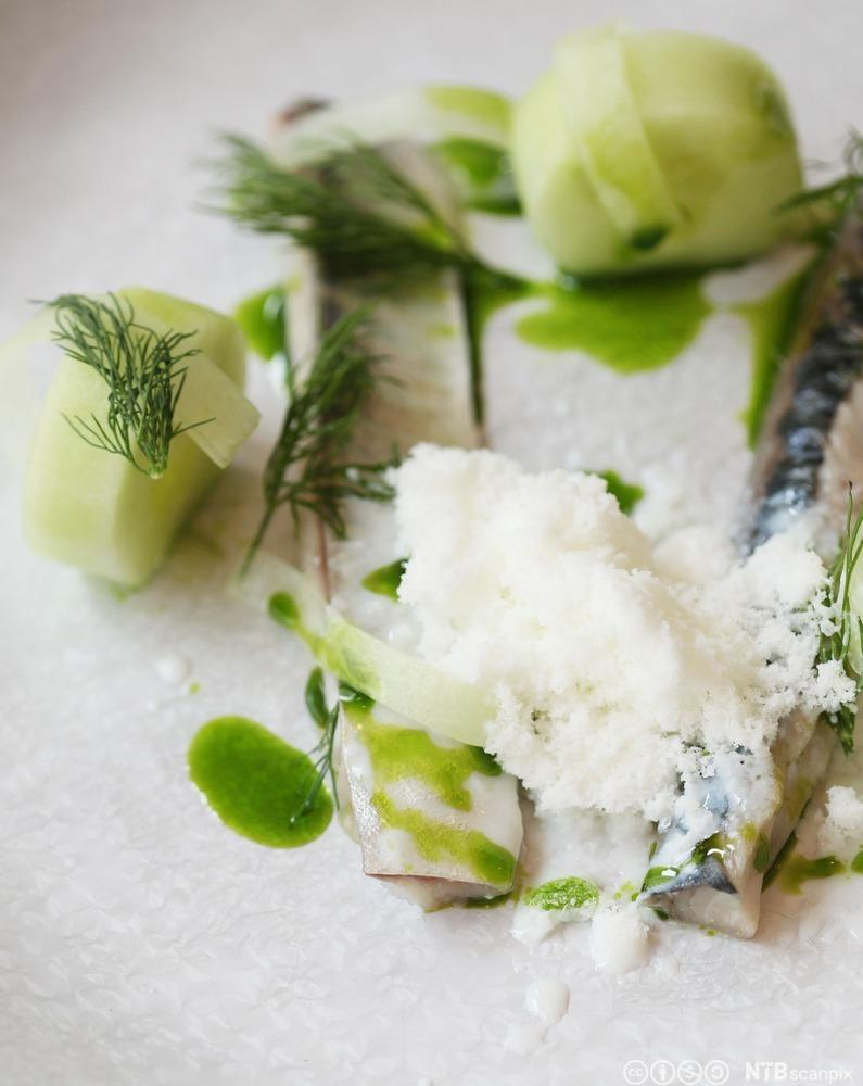 Bilde av en rett bestående av syltet makrell med agurk og dill. Foto.