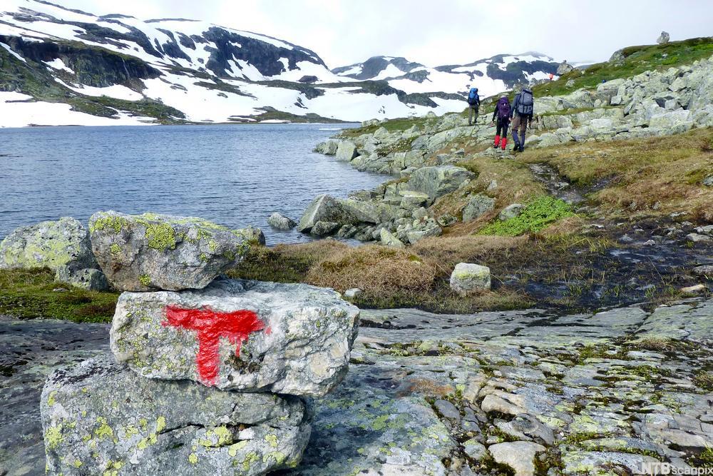 Tre personer går på en sti i norsk fjellandskap. En stor rød T er malt på en stein fremst i bildet. Foto.