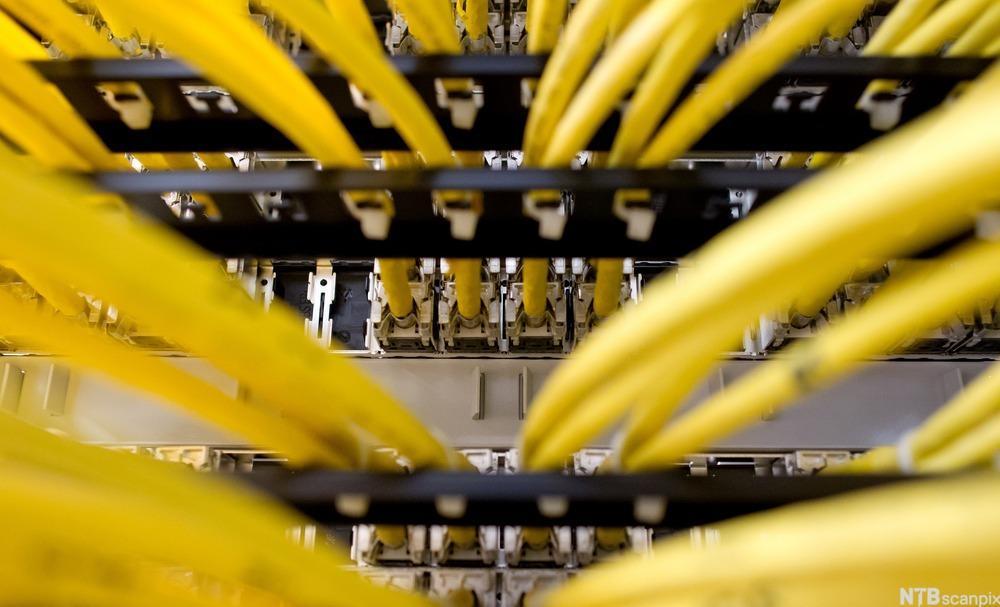 Nettverkskabler