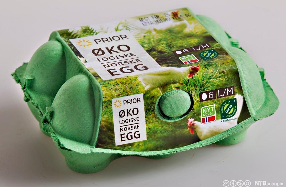 Økologiske egg. Foto