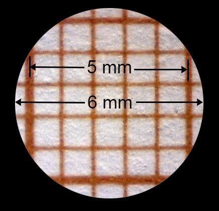 Bilde av millimeterpapir sett gjennom mikroskopet.