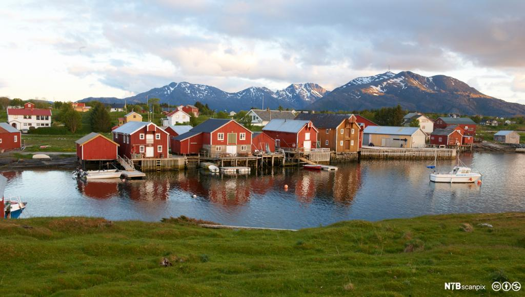 Havn med båthavn og sjøhus. Vega.Helgeland. Foto.
