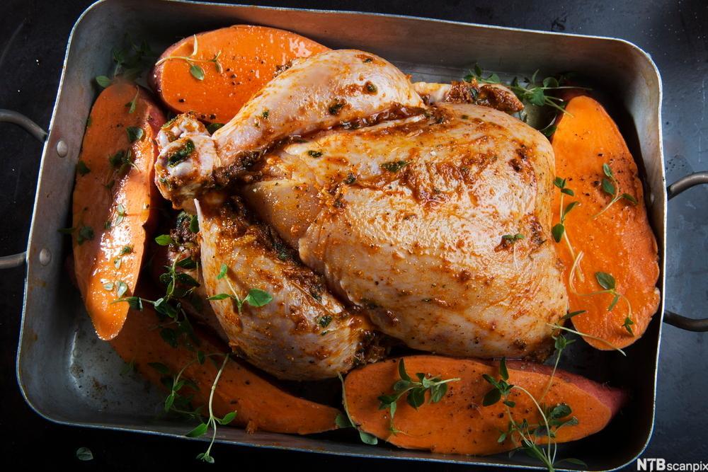 Cajunkrydret helstekt kylling med bakte søtpoteter og grønn chili-vinaigrette. Foto.