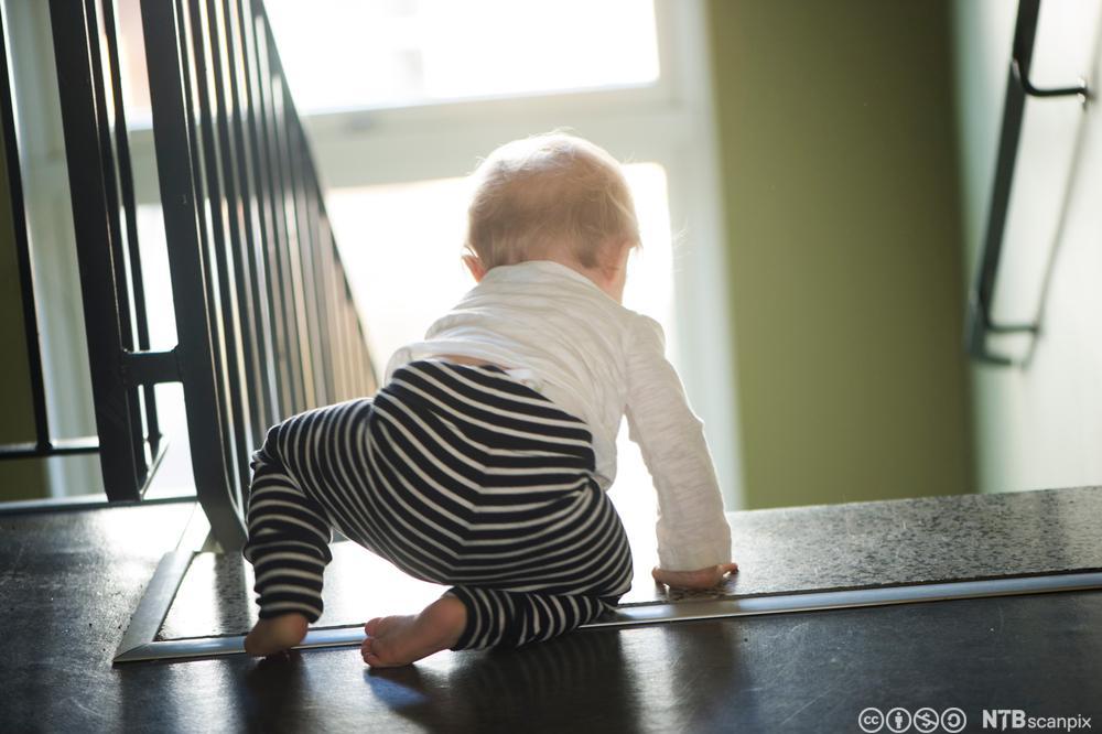 Baby på vei ned en trapp. Foto.