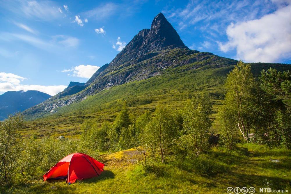 Rødt telt under spiss fjelltopp. Foto