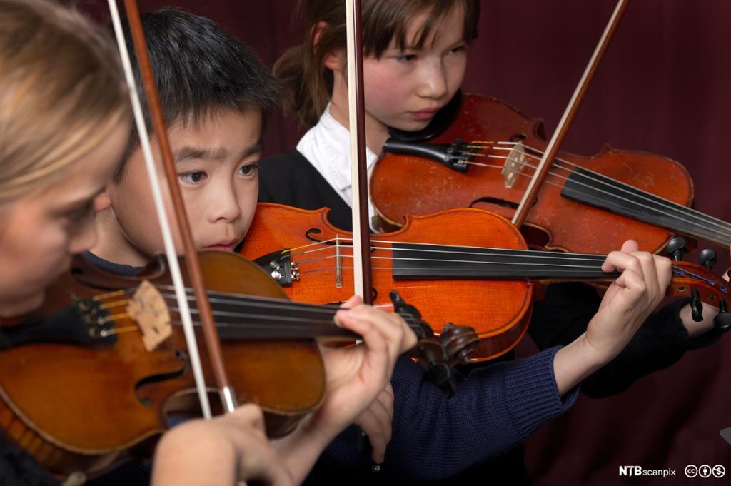 Nærbilde av tre små fiolinister som konsentrerer seg under en konsert. Foto.