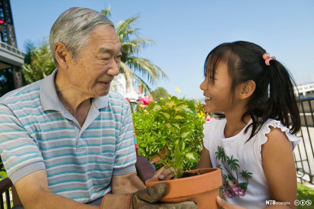 Bestefar med sitt barnebarn i hagen. Foto.