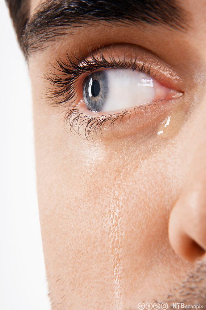 Nærbilde av øye med tårer.Foto.