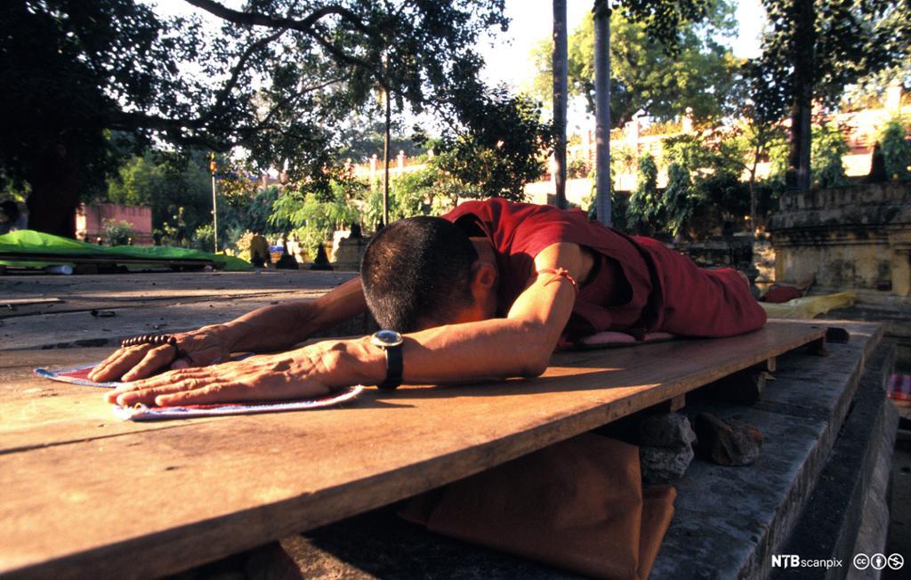 En buddhistmunk ligger flatt på magen. Foto.