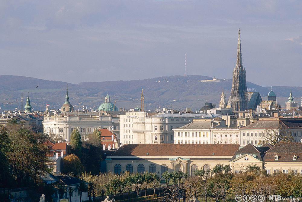 Wien. Blikk mot den nordvestlige delen av byen og Stephansdomen. Kahlenberg i bakgrunnen. Foto.