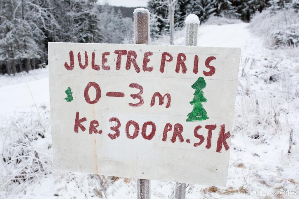 Salgsplakat for juletrær. Foto.
