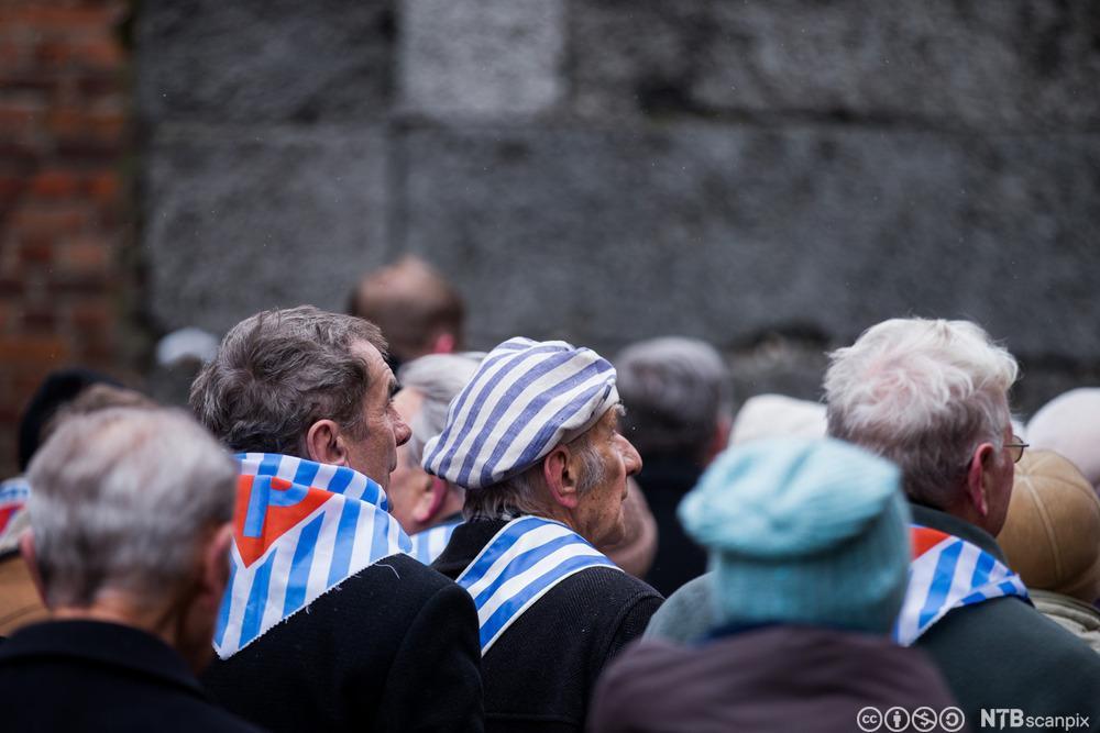 70-årsjubileet for frigjøringen av Auschwitz. Foto