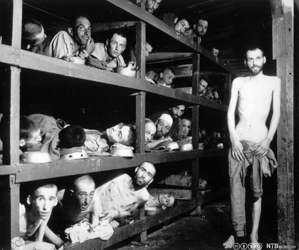 Fanger i en av brakkene i konsentrasjonsleiren BUchenwald like etter at amerikanske tropper gikk inn i leiren, april 1945. Foto.