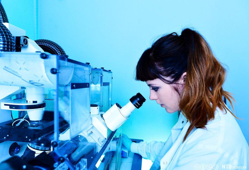 Forsker med avansert mikroskop. Foto.