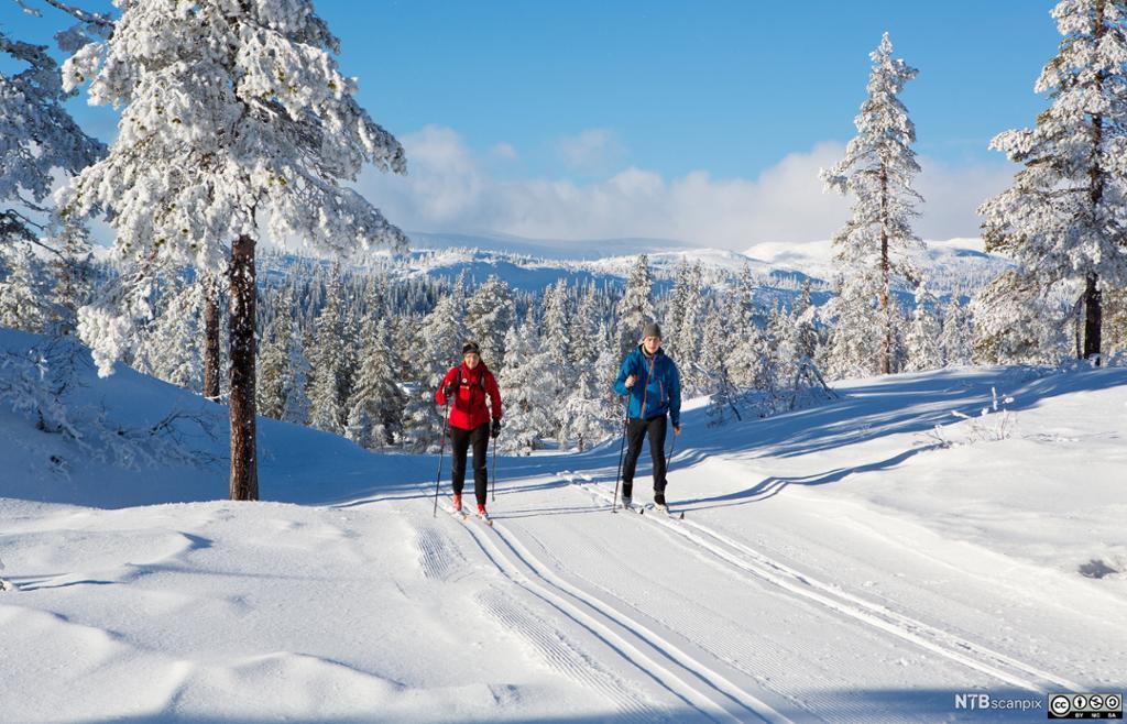To personer på skitur. Foto.