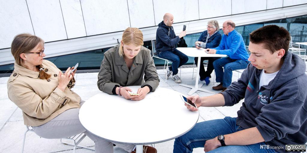 Unge som er opptatt av hver sin mobiltelefon. Foto.